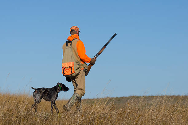 Out Pheasant Hunting Out Pheasant Hunting on the prairie with his dog hunter stock pictures, royalty-free photos & images