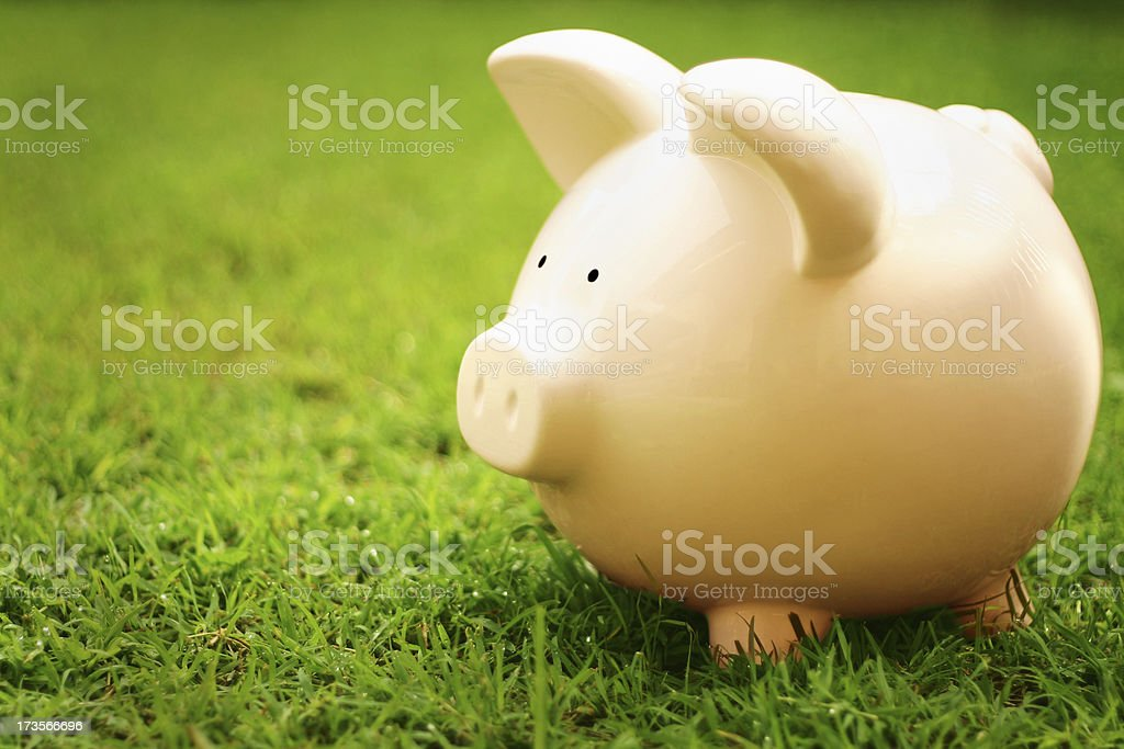 Out to grass royalty-free stock photo