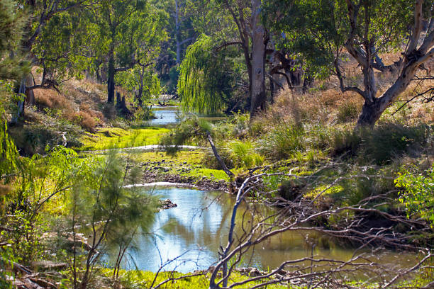 Outback at Dubbo New South Wales Australia stock photo