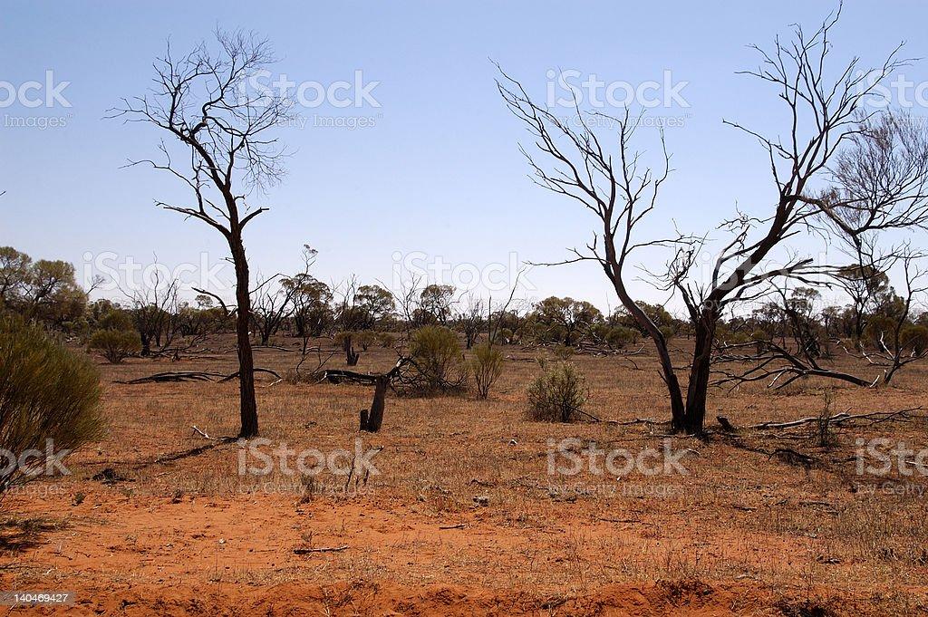 Outback Bush royalty-free stock photo
