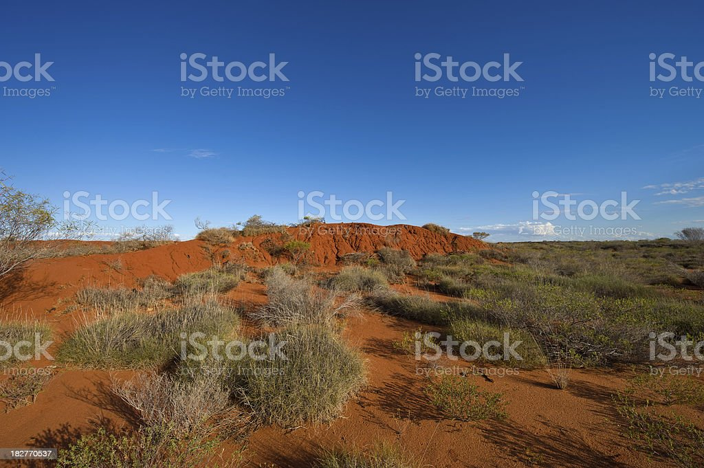 Outback Landscape stock photo