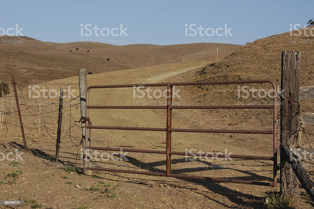 Outback royaltyfri bildbanksbilder