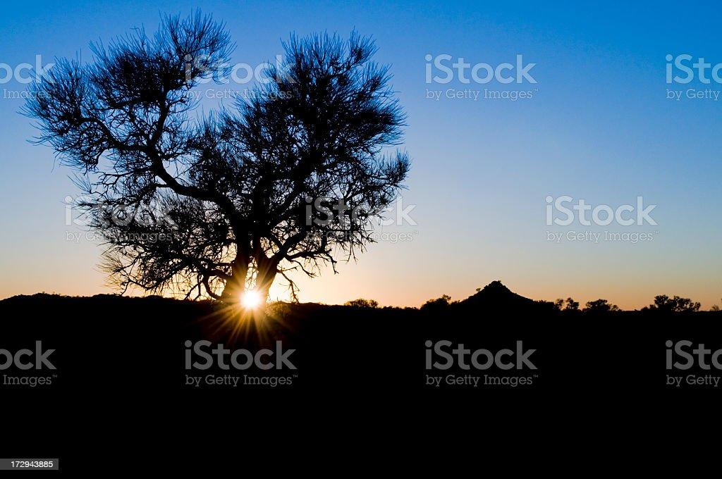 Outback Sunrise royalty-free stock photo