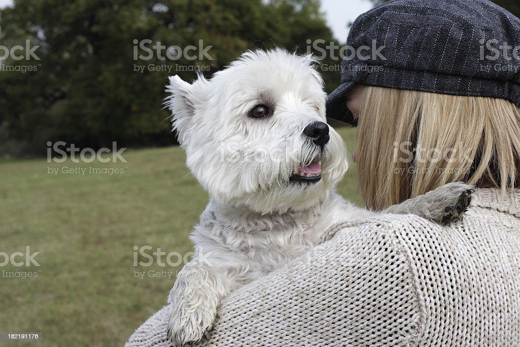 Beno the Westie held on shoulder of fair haired owner royalty-free stock photo