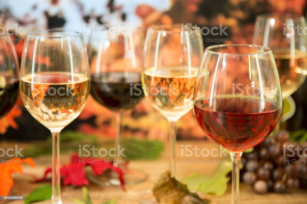 Outdoors wine tasting event in the autumn season. Fall leaves and...