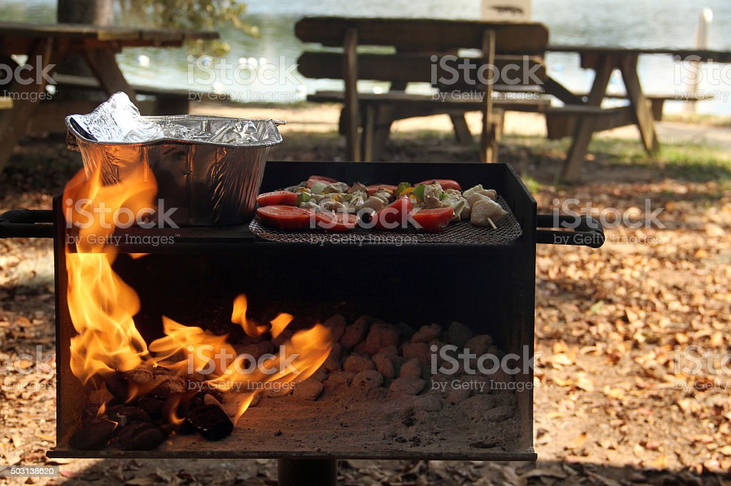 Outdoor Barbeque & Dancing Picnic in the park stock photo