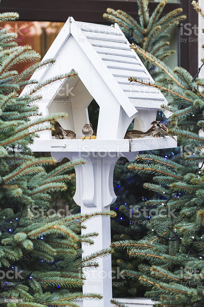 Outdoor bird feeders in fur-trees, decorations for Christmas stock photo