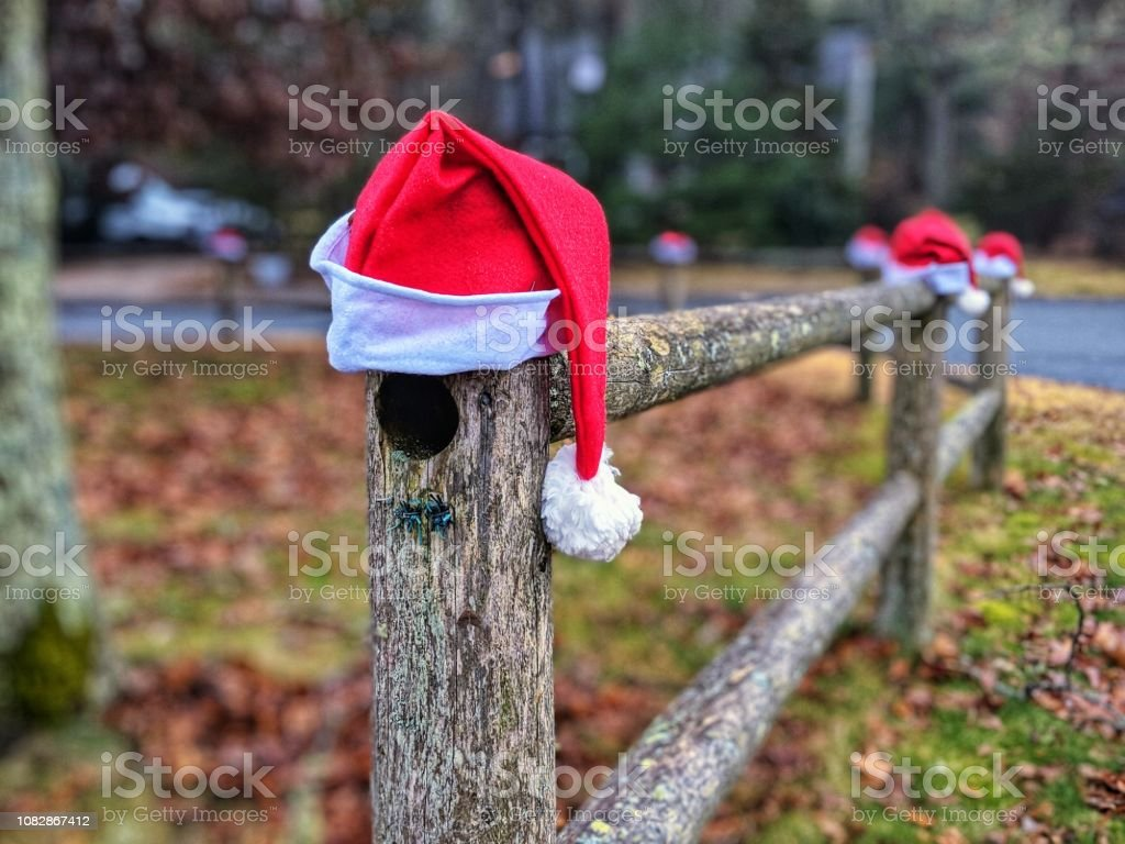 Image of: Outdoor Christmas Decorations Santa Hats Stock Photo Download Image Now Istock