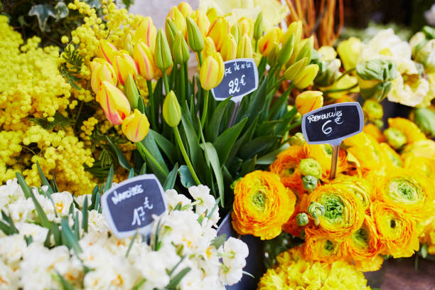 Outdoor flower market in Paris, France stock photo