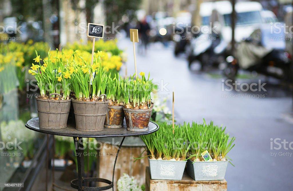 Outdoor flower market on a Parisian street royalty-free stock photo
