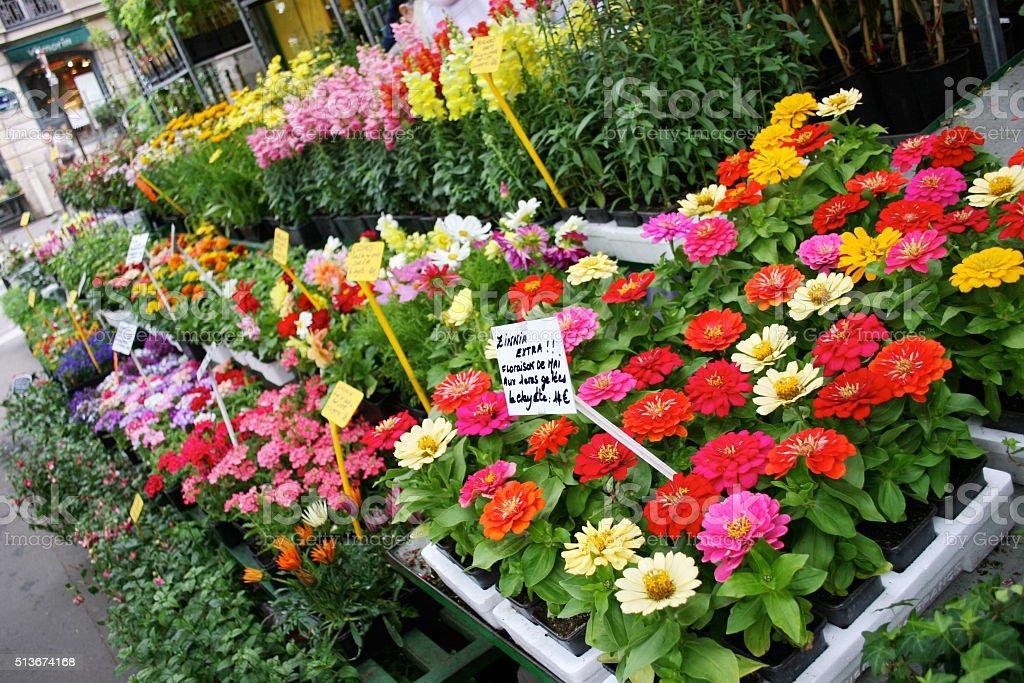 Outdoor flower shop on a Parisian street stock photo