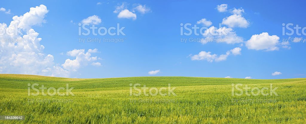 outdoor green field view with blue sky and clouds panorama royalty-free stock photo