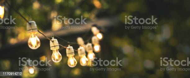 Photo of outdoor party string lights hanging in backyard on green bokeh background with copy space