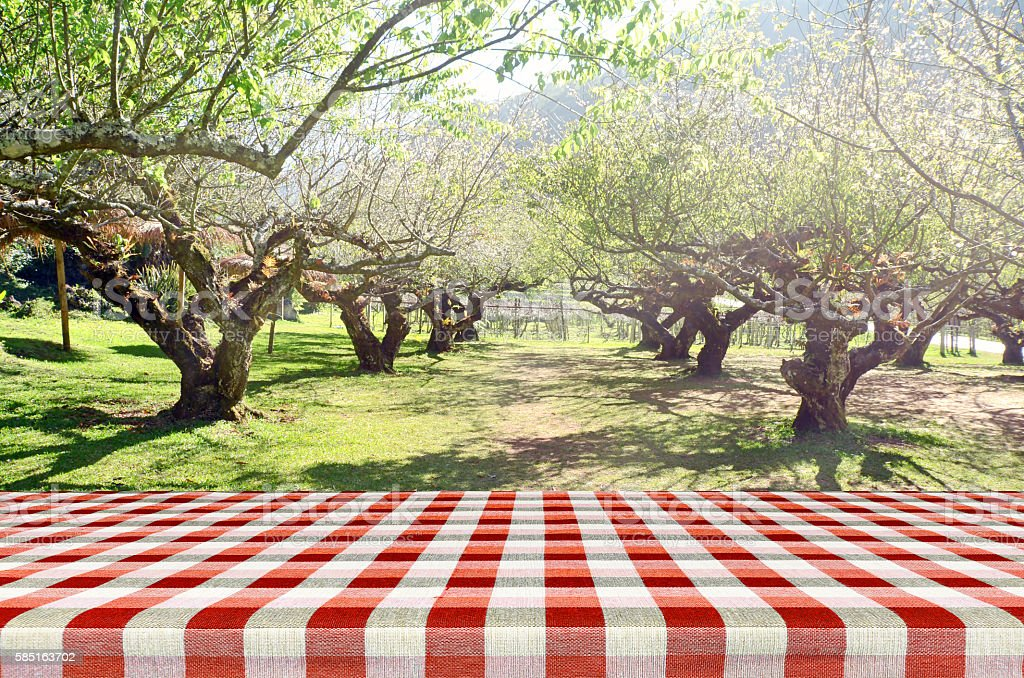 Outdoor Picnic Background In Summer Sun Light Stock Photo More