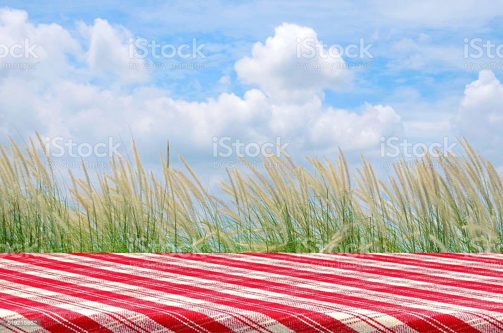 Outdoor Picnic Background with Picnic Table. stock photo