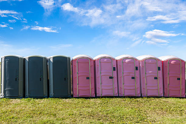 Outdoor Portable Toilets on an Open Field Gray and pink portable plastic toilets on an open field for an outdoor event. portable toilet stock pictures, royalty-free photos & images