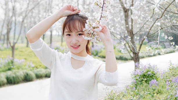 Outdoor portrait of beautiful young Chinese girl smiling among blossom cherry tree brunch in spring garden, beauty, summer, emotion, expression and people lifestyle concept. stock photo