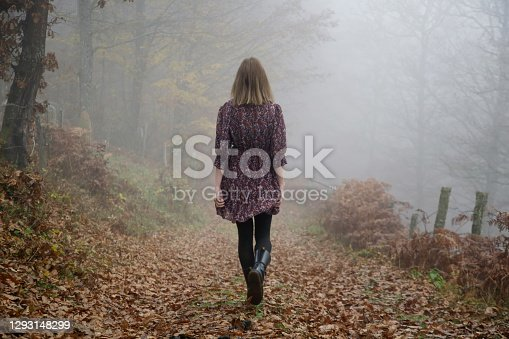 Outdoor portrait of woman in brown dress during foggy autumn morning in the countryside.