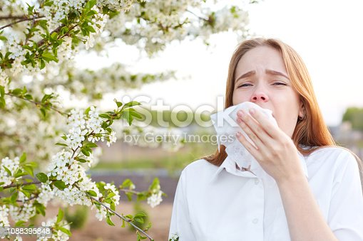 istock Outdoor shot of displeased Caucasian woman feels allergy, holds white tissuue, stands near tree with blossom, feels unwell, sneezes all time. People and health problems. Spring time. Blooming 1088395848