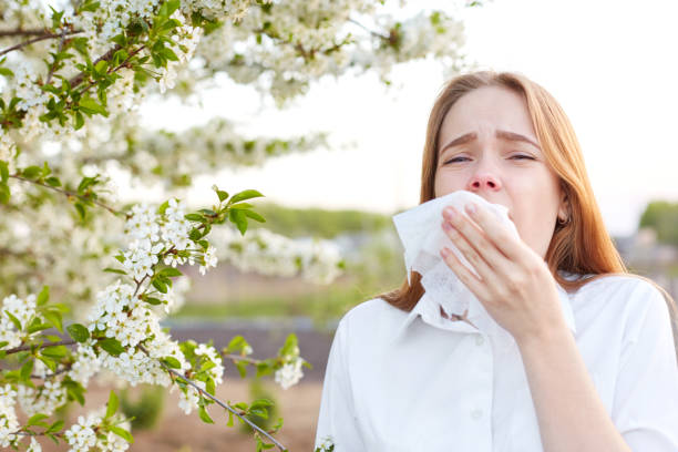 outdoor shot of displeased caucasian woman feels allergy, holds white tissuue, stands near tree with blossom, feels unwell, sneezes all time. people and health problems. spring time. blooming - primavera estação do ano imagens e fotografias de stock
