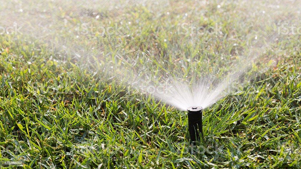 Outdoor sprinkler stock photo