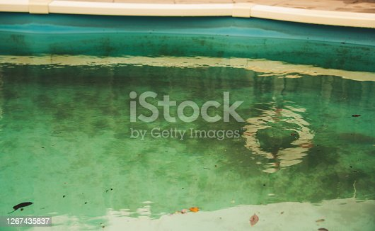 Neglected swimming pool with debris and algae