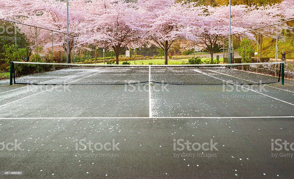 Outdoor Tennis Court with Cherry Blossoms, Washington Park in Portland stock photo