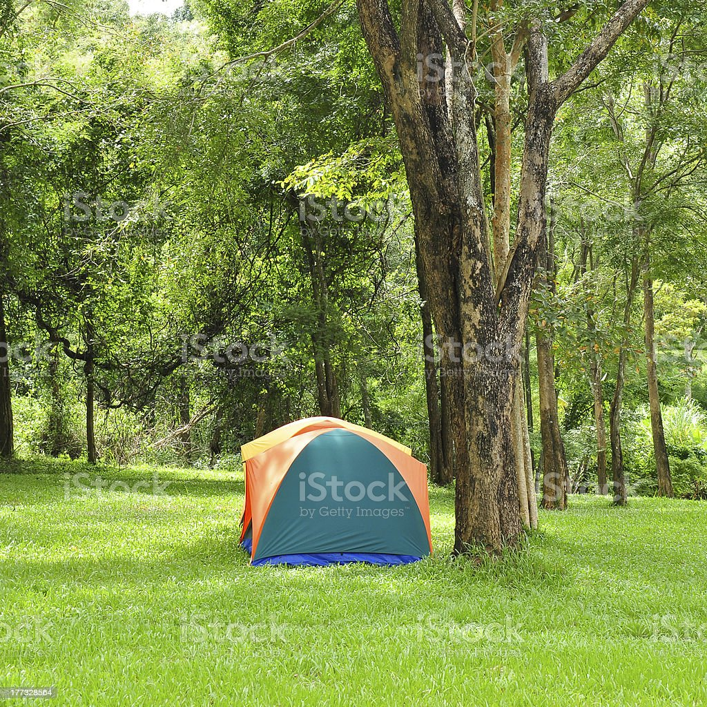 Outdoor tent, forest campsite royalty-free stock photo