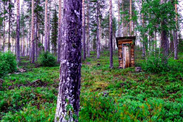 Peeing In The Woods Stock Photos, Pictures & Royalty-Free