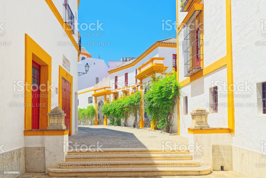Outdoor view of Arena on of Square of bulls Royal Maestranza of Cavalry in Seville. Spain. stock photo