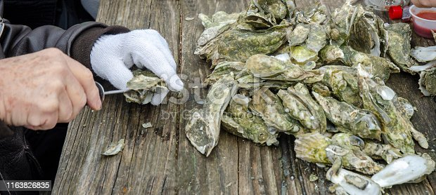 Shucking, cooking and eating fresh steamed oysters trucked in from the tidewaters of South Carolina.