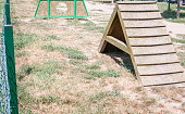Outdoor wooden barrier to training and dressage the dog for military or police
