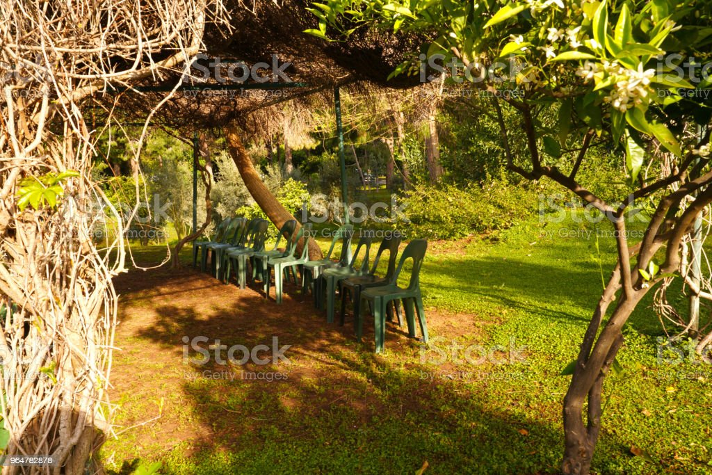 Outdoors class for activities and chairs under the trees royalty-free stock photo