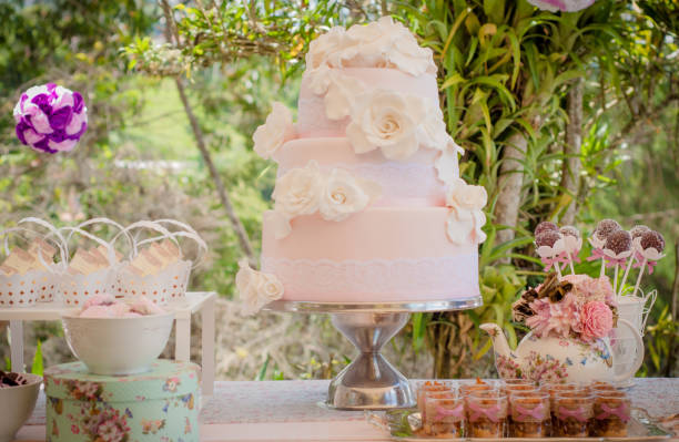 outdoors wedding cake and plumcakes with shabby chic style pink decorations with modern soft colors in garden during sunny day stock photo