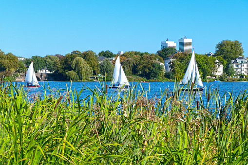 Outer Alster with sailing boats in summer