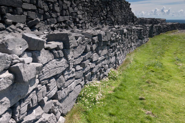 Outer Wall of Dun Aonghasa (Dun Aengus) with walkway and Atlantic Ocean, Inishmore The view east, northeast from an outer enclosure of looking along the concentric wall surrounding the inner enclosure of Dun Aonghasa (Dun Aengus), the exceptional dry stone and walkway visible.  White flowers of Sea Campion (scientific name: Silene uniflora)  (irish name: Coiren mara) at the wall base.  Here the land falls away to review a view of the North Atlantic Ocean, Galway Bay.  Inishmore, Aran Islands, County Galway, Ireland michael stephen wills aran stock pictures, royalty-free photos & images