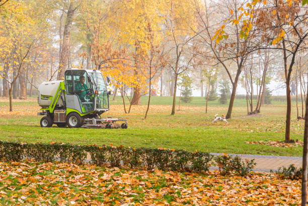 Outfront mowers Grillo, cleaning the fallen autumn leaves in the park stock photo