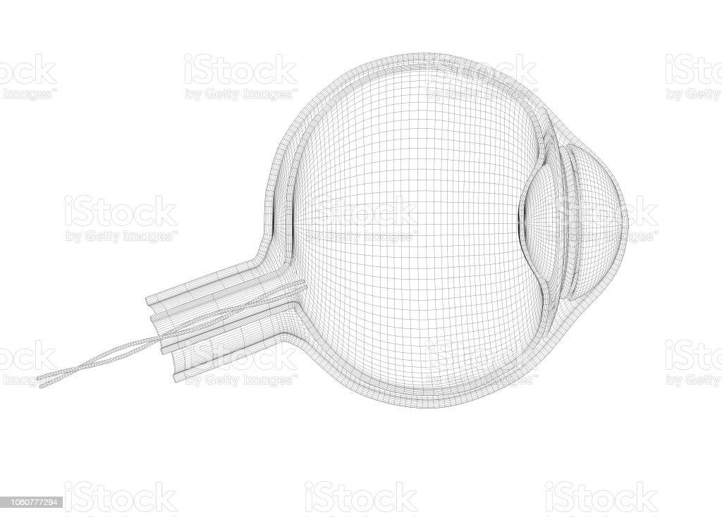 Outline eye plan. 3d Illustration for institution or presentation stock photo