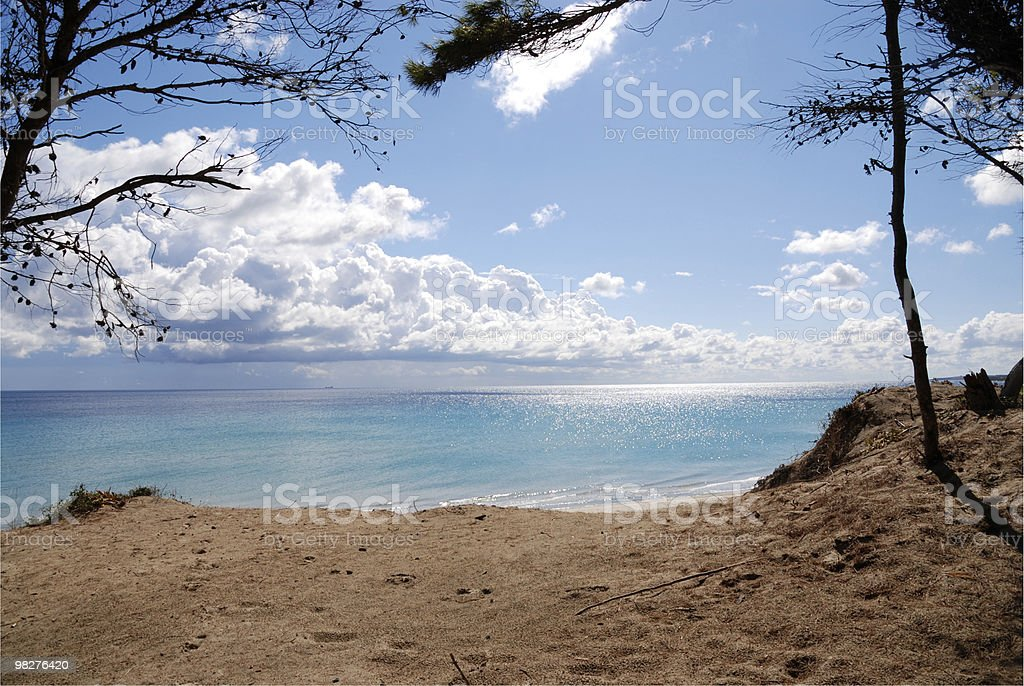 outlook dalla duna di un magnifico mare foto stock royalty-free
