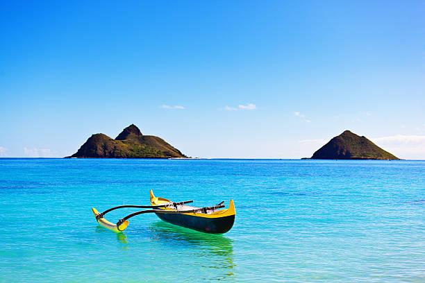 Image result for Canoa