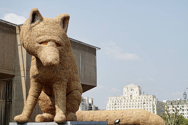straw fox sculpture celebrates festival of britain anniversary - whiteway fox stock photos and pictures