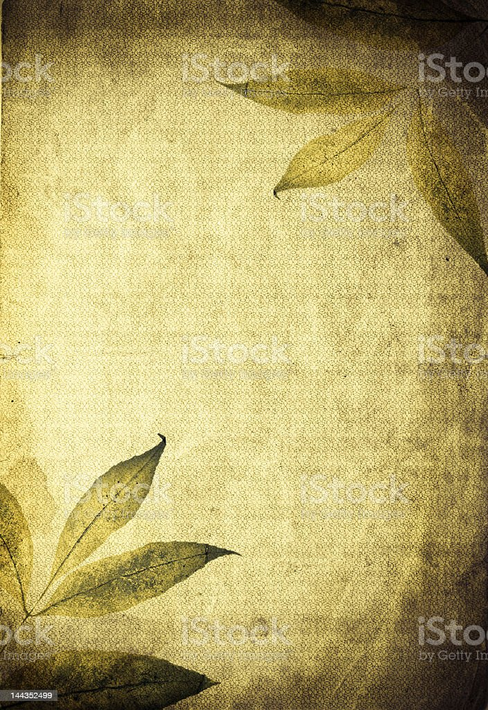 Outumn organic collage royalty-free stock photo