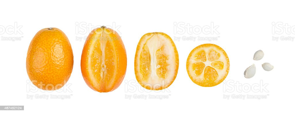 Oval Kumquats With Seeds In A Row Isolated On White stock photo