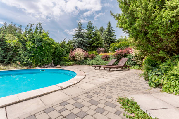Oval swimming pool with sunbeds Oval swimming pool in a garden area, surrounded by plants with two sunbeds war effort stock pictures, royalty-free photos & images