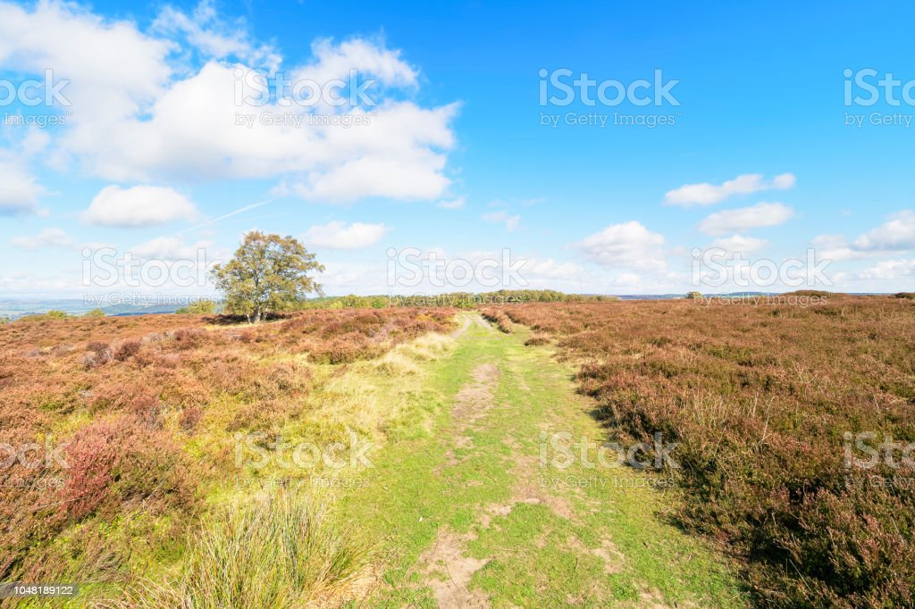 Over Stanton Moor stock photo