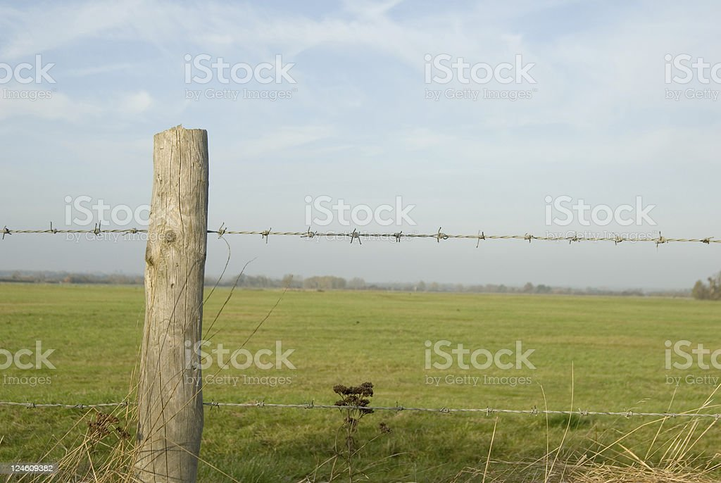 Over the fence royalty-free stock photo