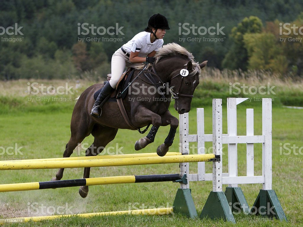 Over the Oxer stock photo