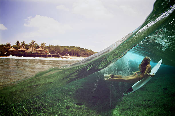 42af91fc64625 Top 60 Duck Dive Stock Photos, Pictures, and Images - iStock