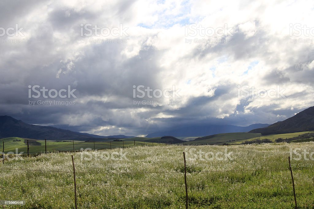 Overberg Green field with blue mountains and clouds stock photo