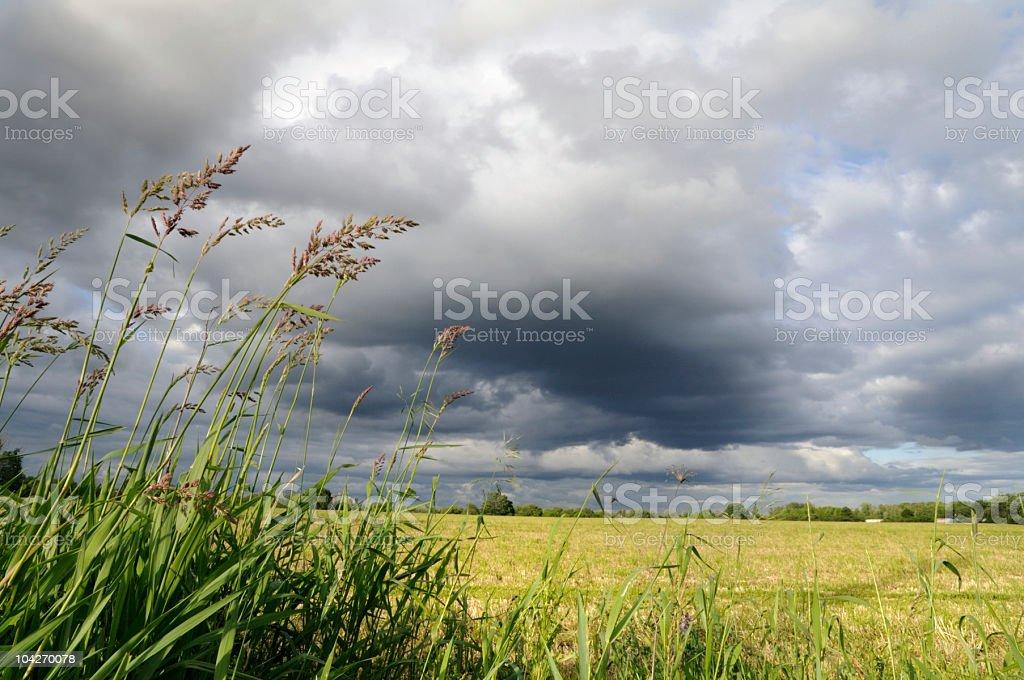 Bedeckter Himmel landwirtschaftlichen – Foto